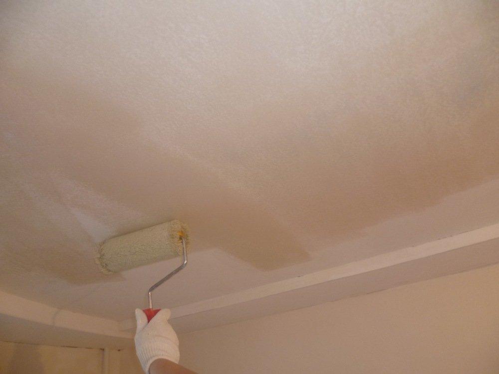 Грунтовка потолока раствором против плесени