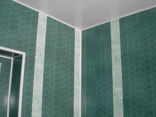 Обшитые пластиковыми панелями стены выглядят очень стильно и необычно