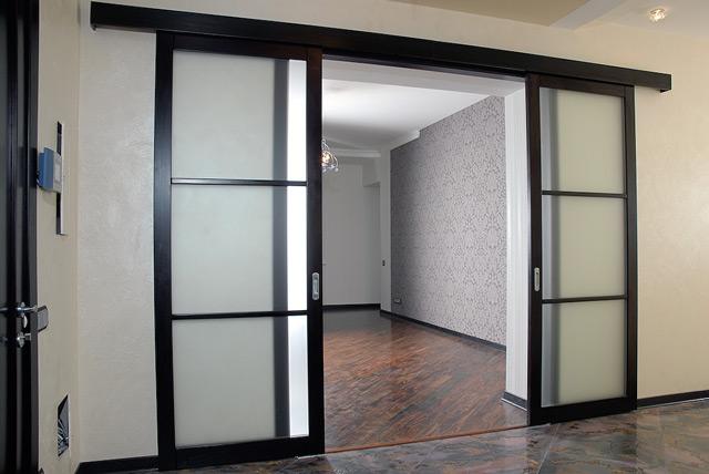 Дверь-купе с двумя полотнами