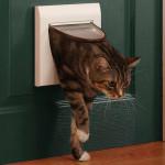 Дверца для кошек и собак
