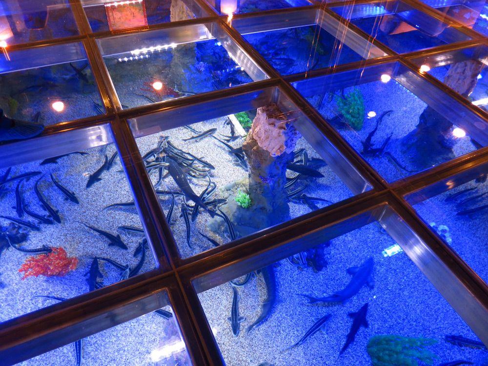 Пол-аквариум