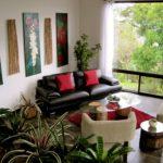 Комнатные растенияв интерьере