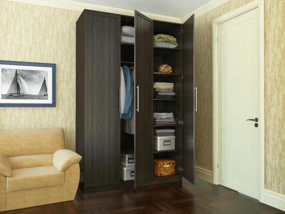 Распашной шкаф в спальню