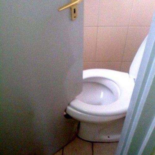 Дверь с дыркой для унитаза