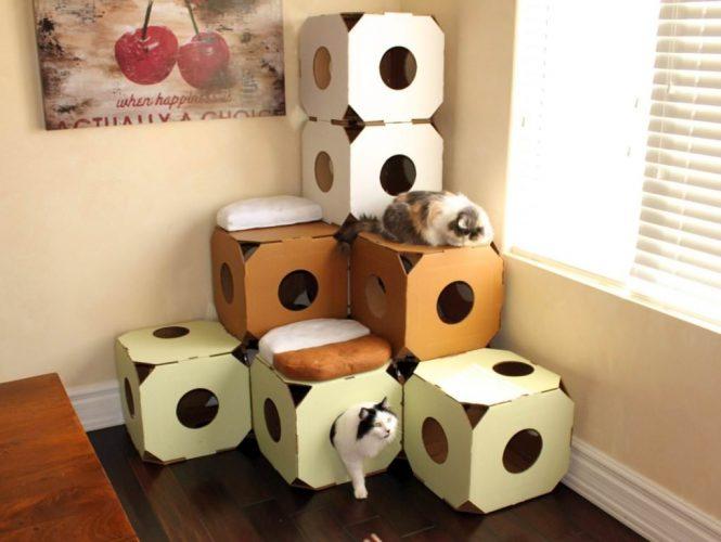 Картонные лабиринты для кошек