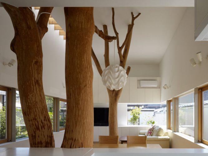 Дерево в интерьере
